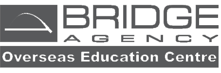 bridgeagency